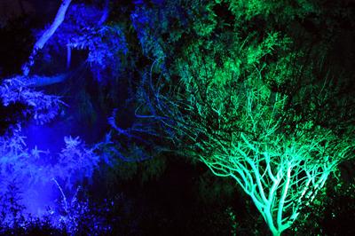 spotlighting for halloween - Halloween Lighting