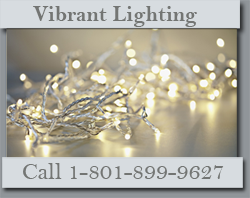 Order Christmas Light Installation In Utah